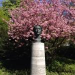 Buste van Cosima Wagner
